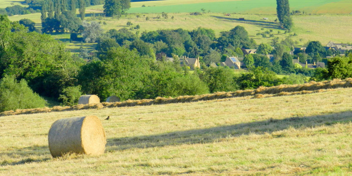 cotswold charm late summer availability book self catering